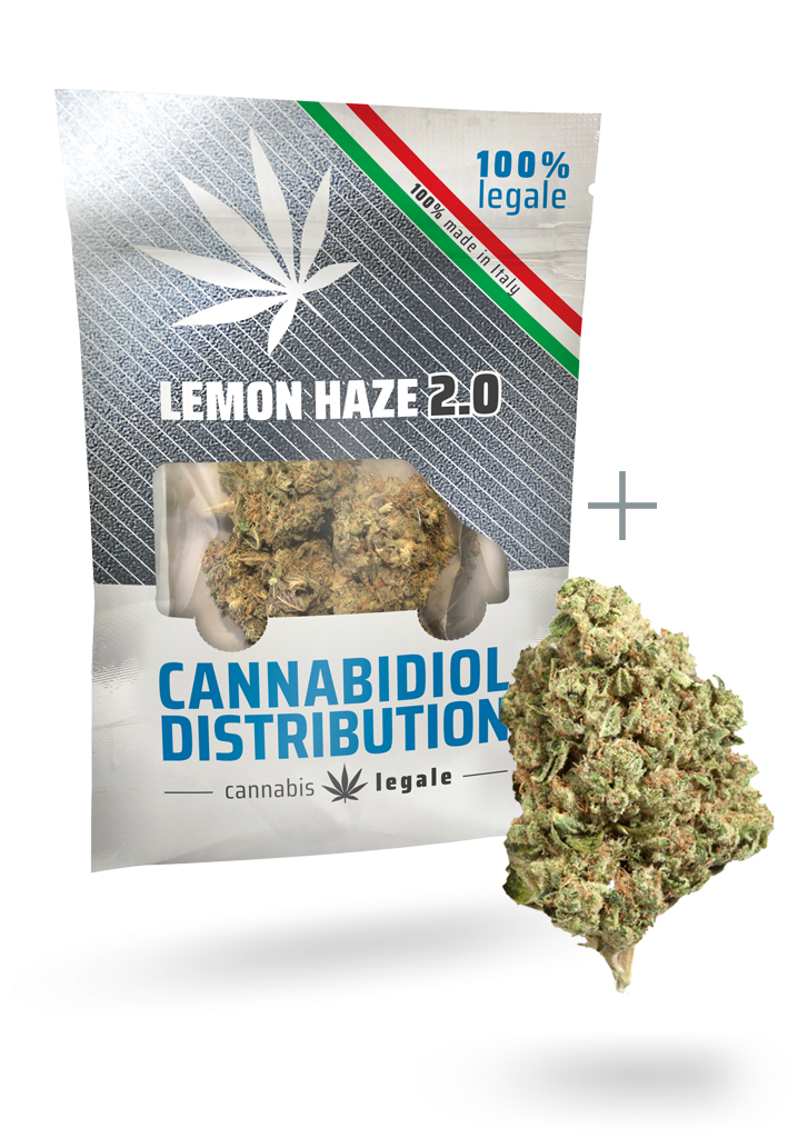 lemon haze 2.0