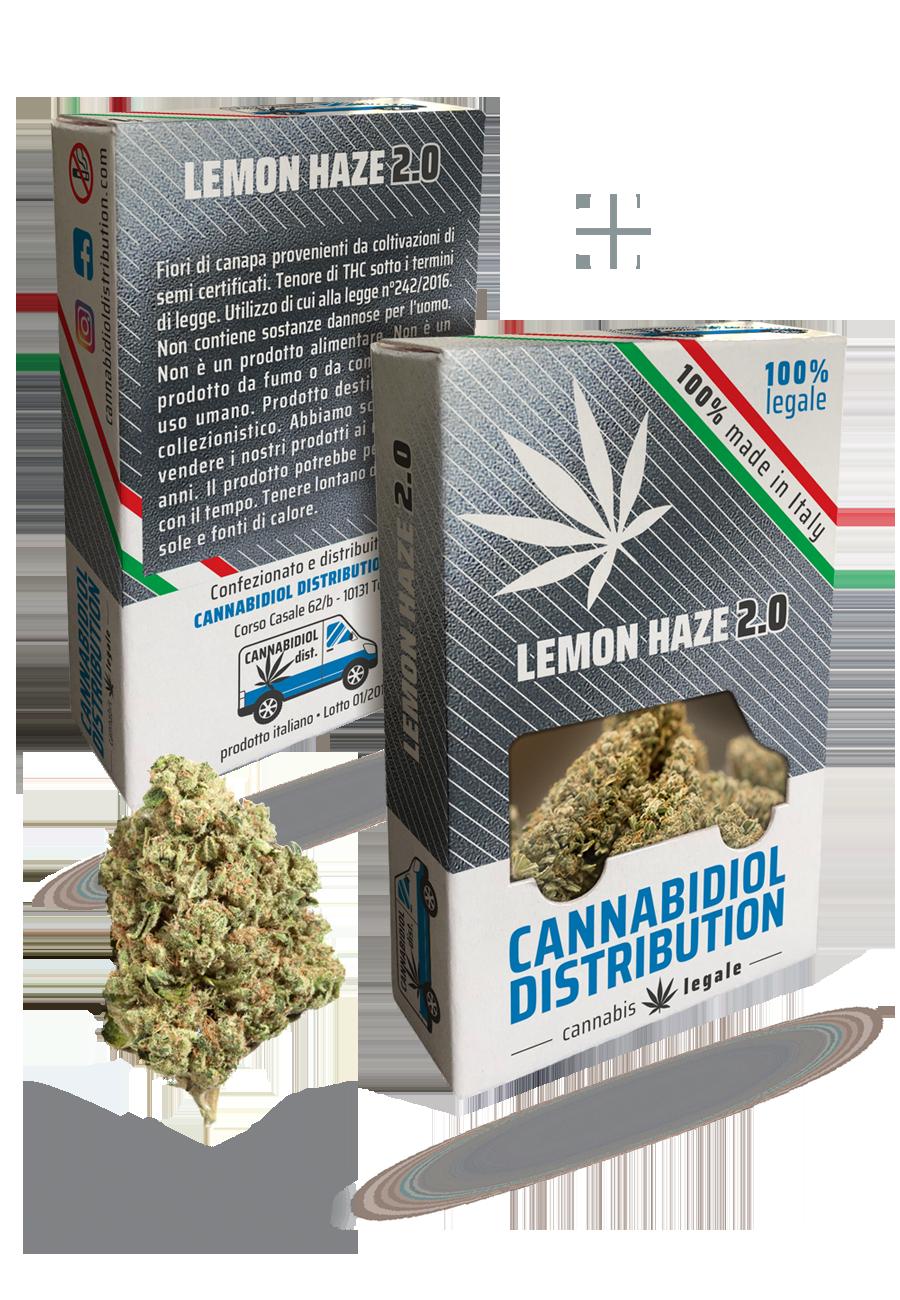 distributori lemonhaze 2.0