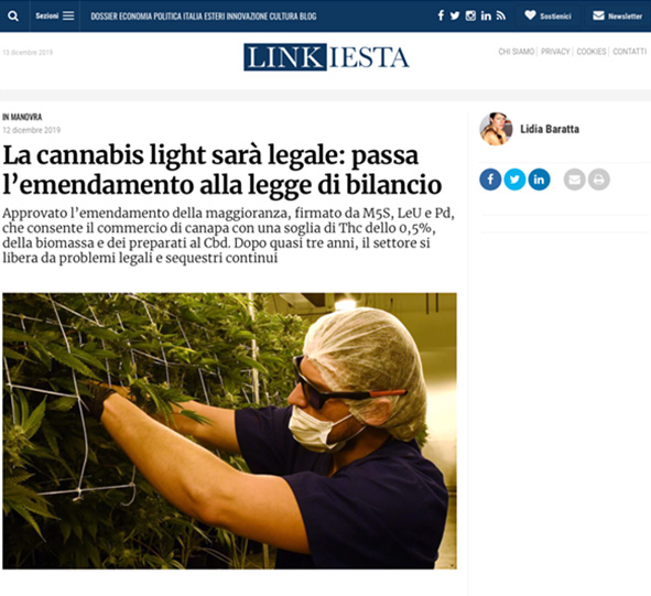 linkiesta la cannabis light sarà legale
