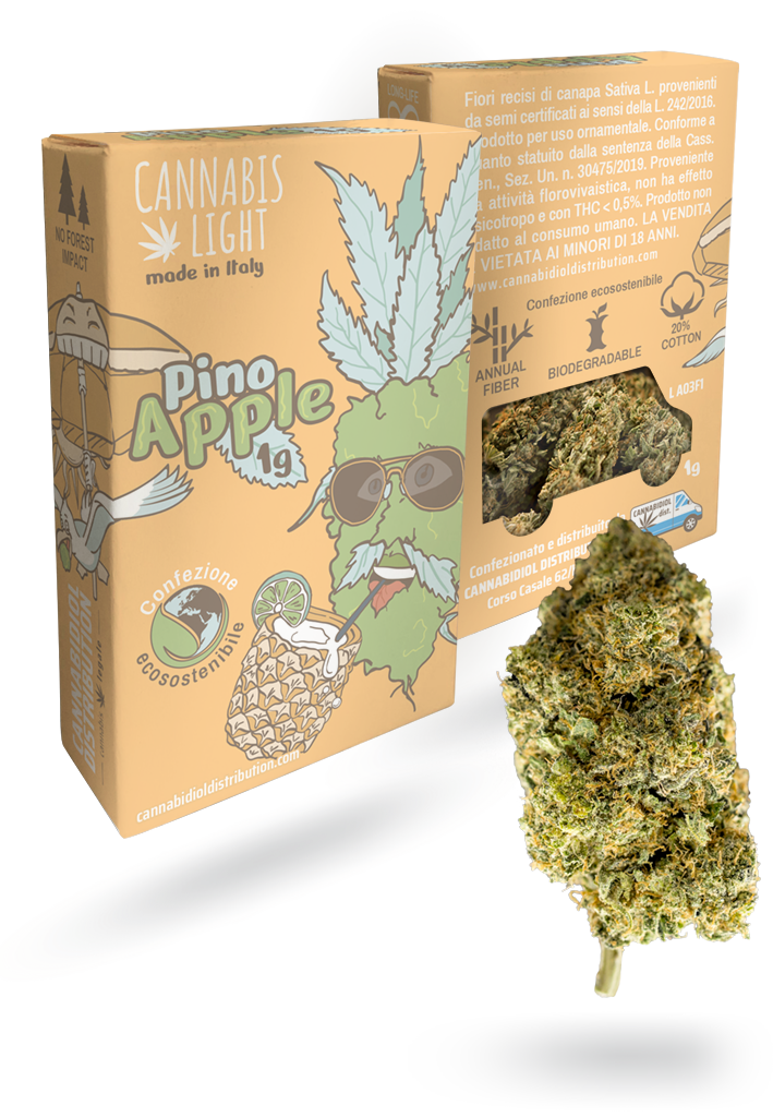 cannabis light Pino Apple