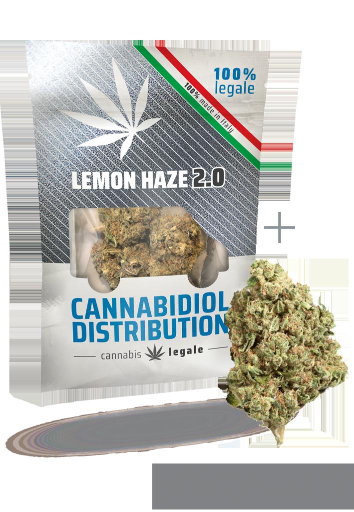 lemon haze 2.0